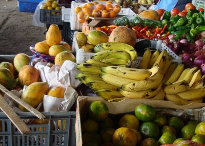 Des fruits à profusion