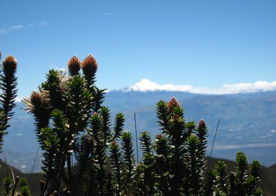 Equateur 2011 944